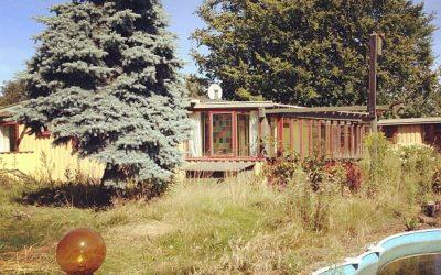 Sommerhuset som klumme i Søndag