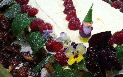 Opskrifter den store julekagedyst