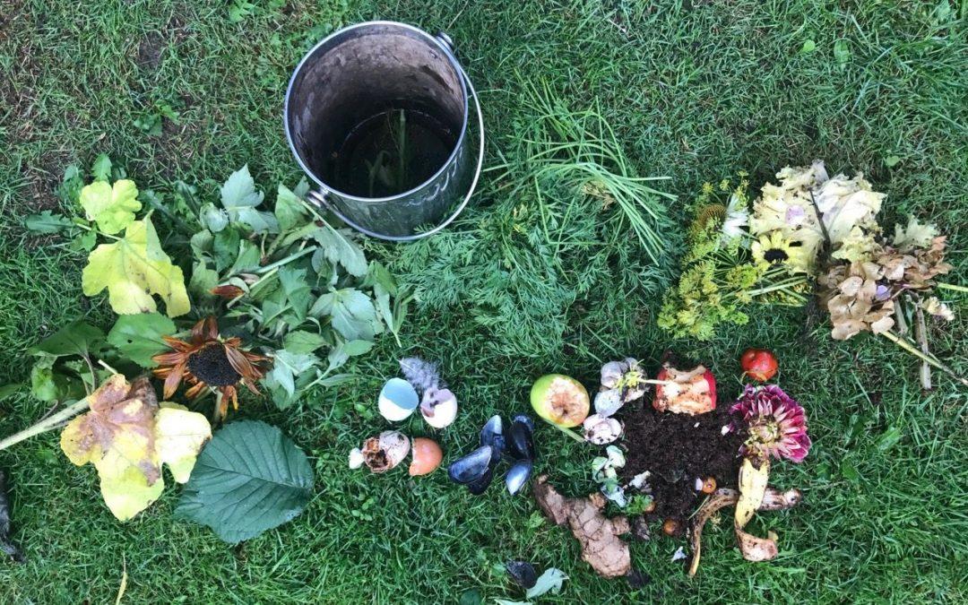 Derfor elsker jeg en godt snasket kompost – uge 38 i haven