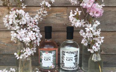 Nyhed: Wenneberg og sønner Botanisk Gin