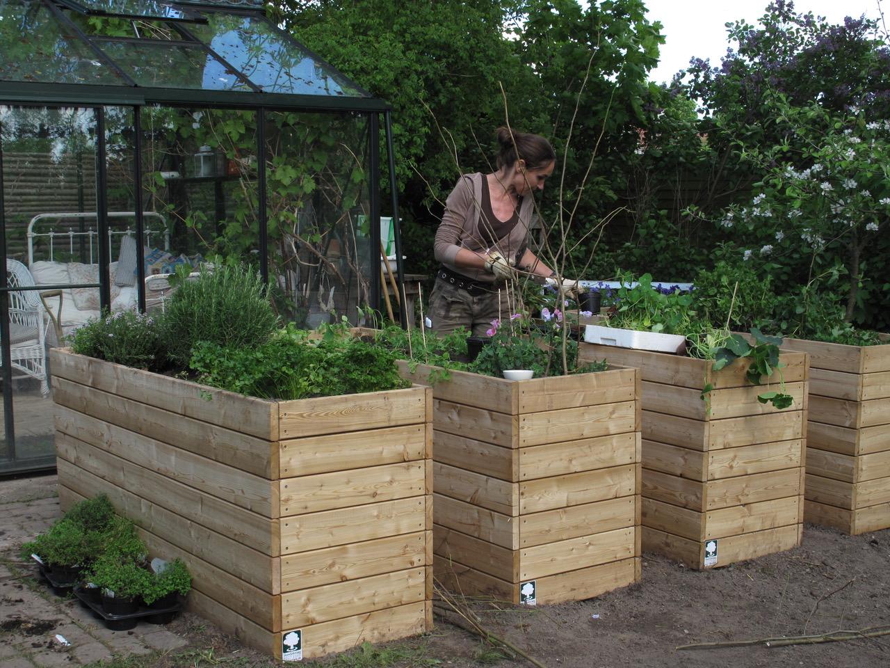 Smuk Tre gode måder at dyrke i højbed + bygge plantekasser | Signe KK-11