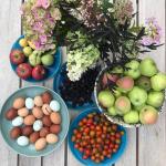 September i haven