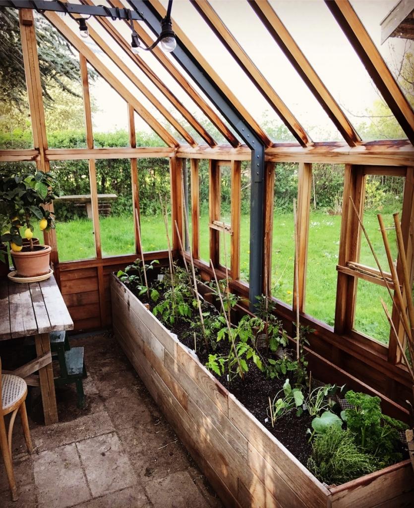 hvornår kan man plante i drivhus